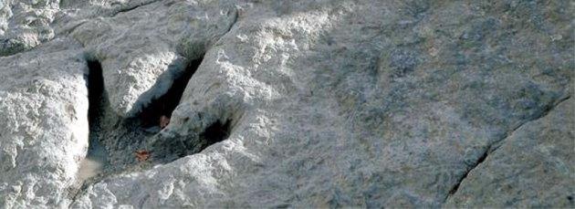Huella de terópodo (Imagen: www.lariojaturismo.com)